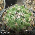 Thelocactus 2087.42AZ